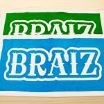 braiz2013-02