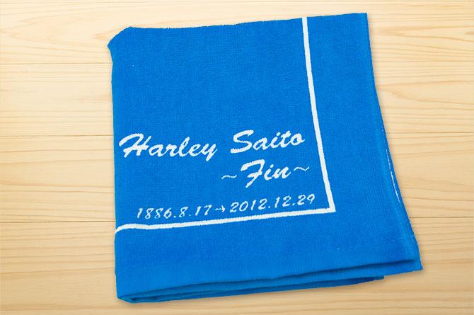 harley-saito-2012-05