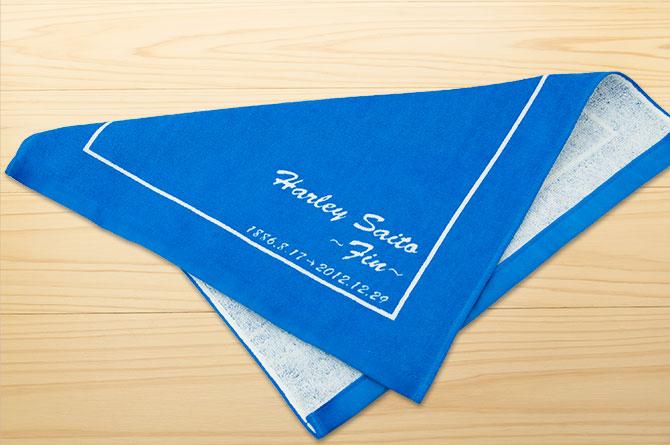 harley-saito-2012-06