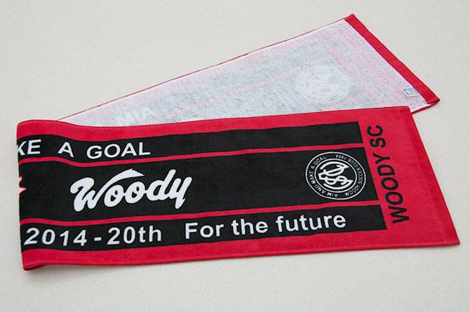 woody-sc-2014-04