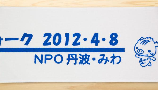 npotanbamiwa_walking201248_04