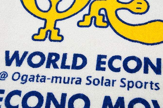 world-eco-move2015-04